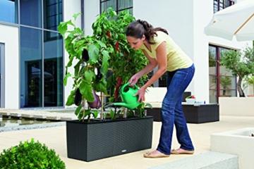 Pflanzgefäß Kunststoff Terasse